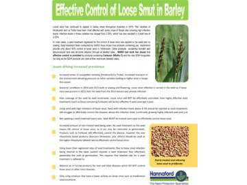 Effective control of loose smut in barley