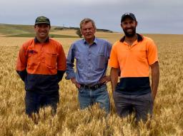 SA Growers Reap Benefits From Seed Treatment Combo