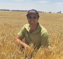 Easy handling & effective root disease management a winning combination for WA farmers